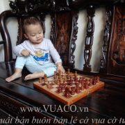 bộ bàn cờ vua cho bé